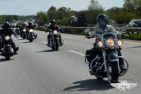 Harley Trophy_2013-132