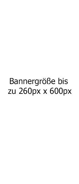 260x600