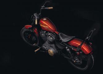 Harley-Davidson Sportster Customized