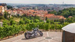 Harley Davidson Sport Glide 201804