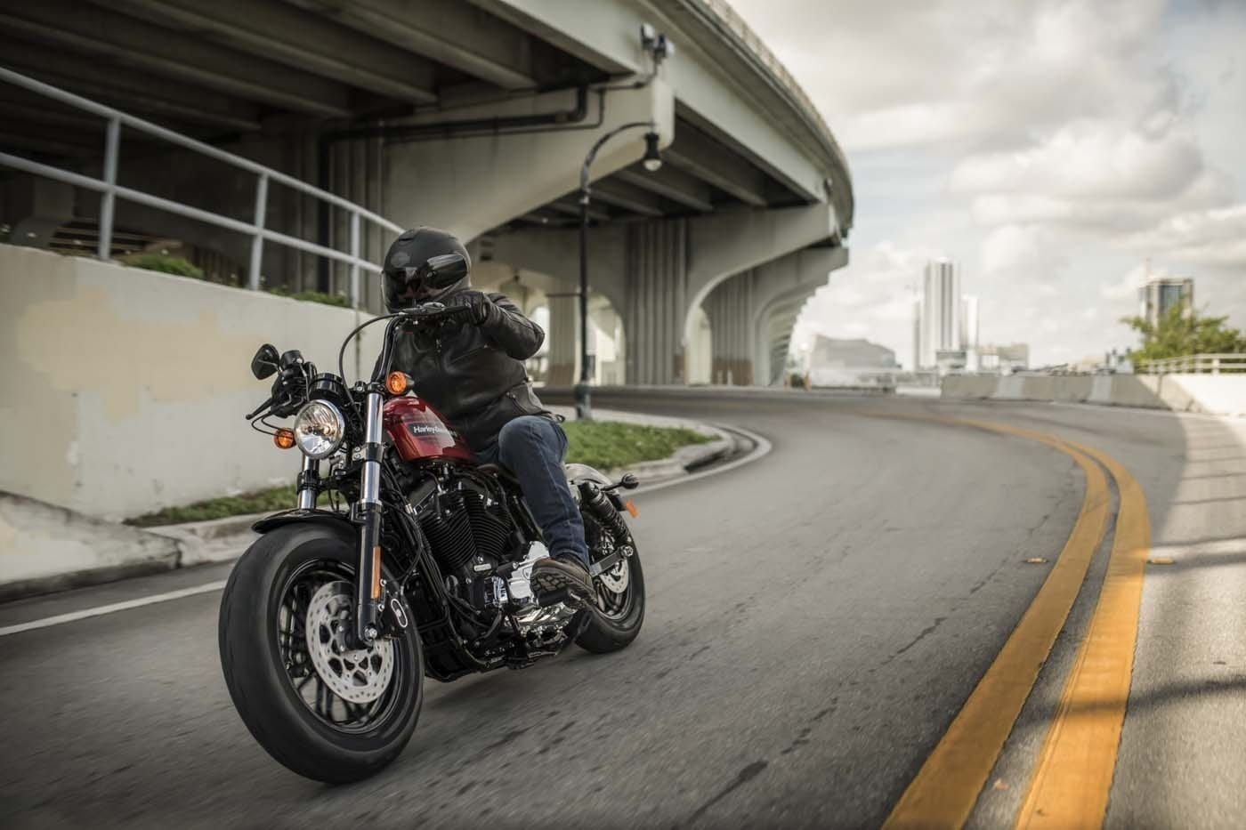 HARLEY-DAVIDSON FORTY-EIGHT SPECIAL AND IRON 1200 SPORTSTERS 19