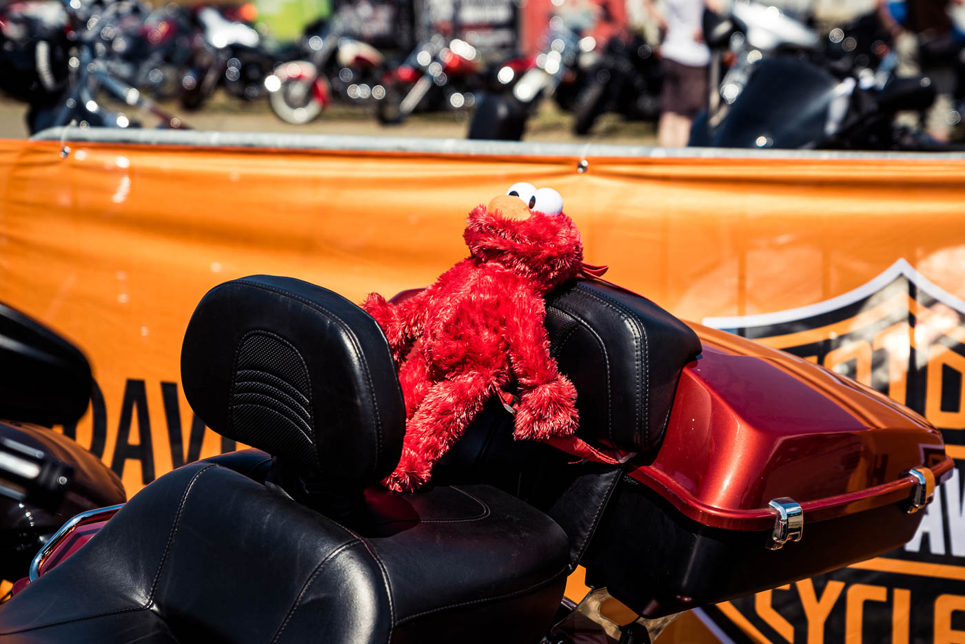 2019HD28 Harley Days Dresden Review 34