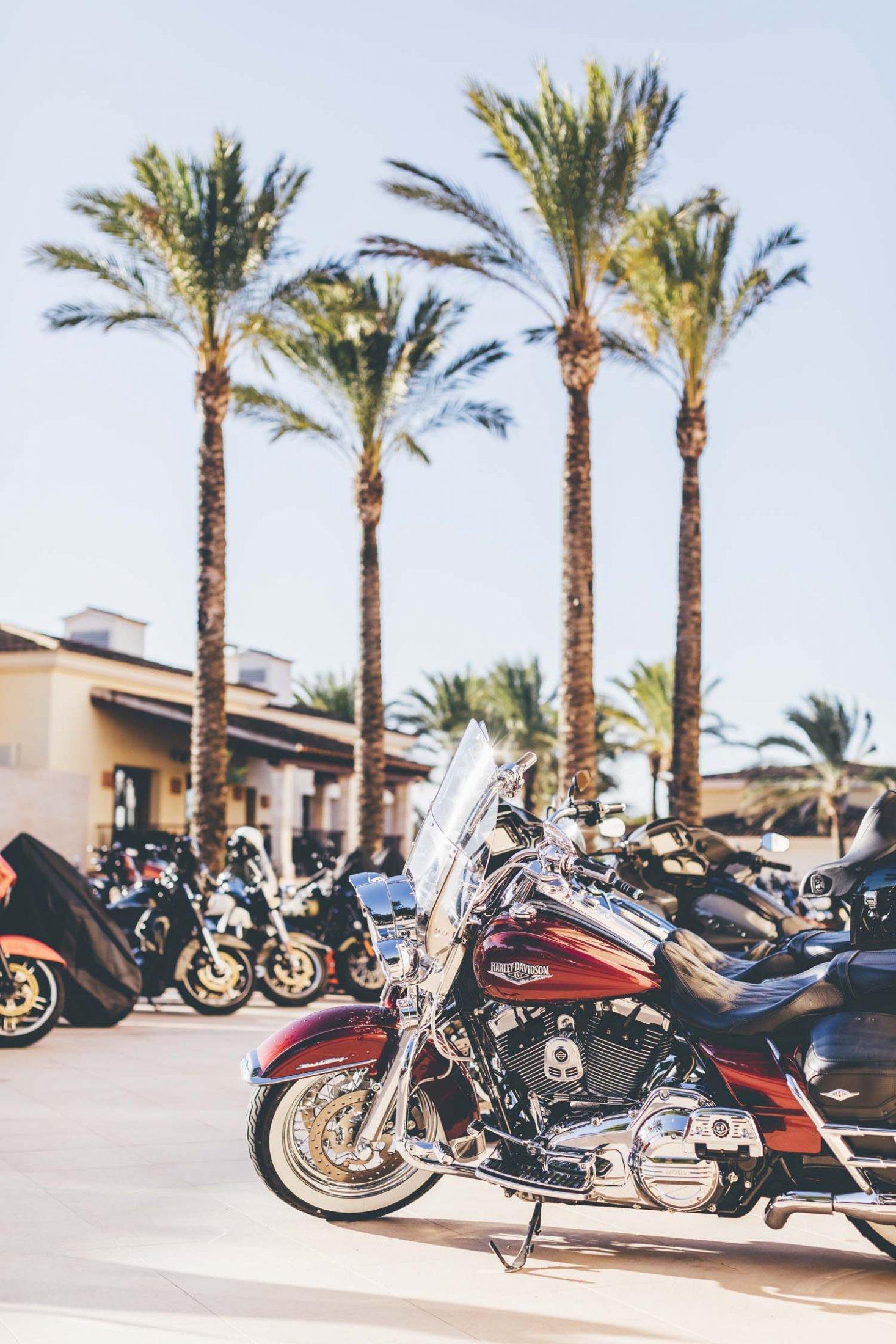 2019HD35 Mallorca Bike Week 16
