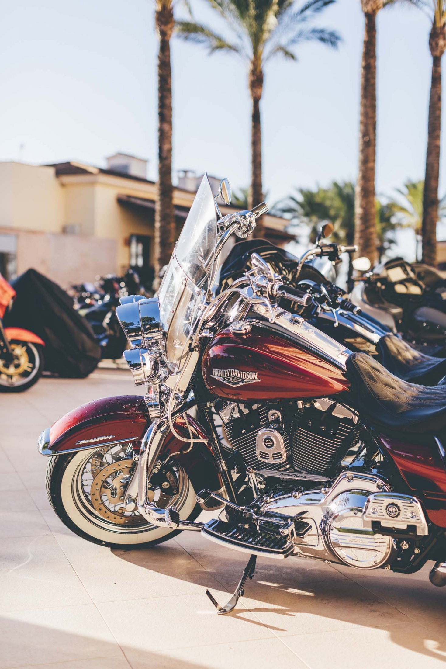 2019HD35 Mallorca Bike Week 18