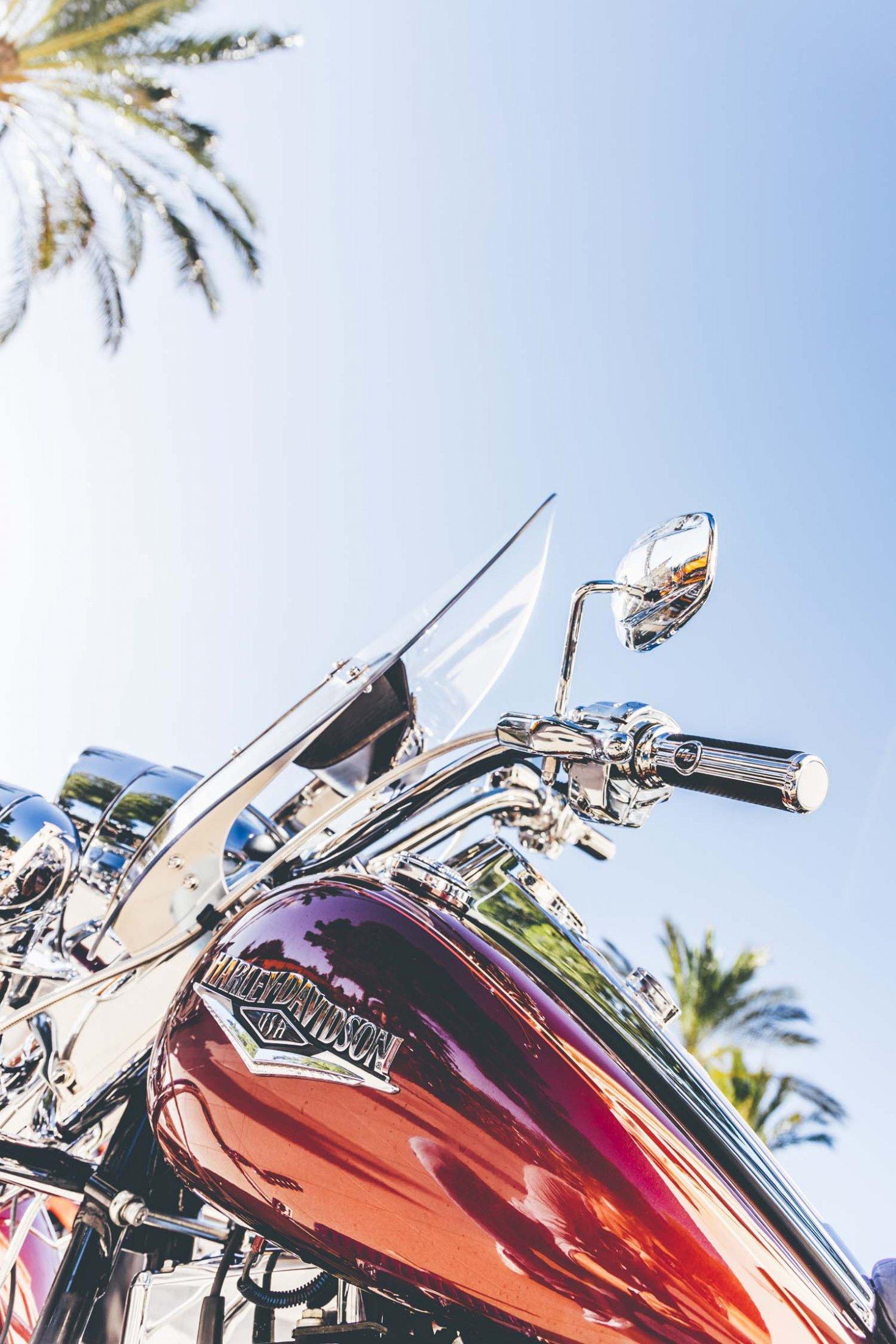 2019HD35 Mallorca Bike Week 19