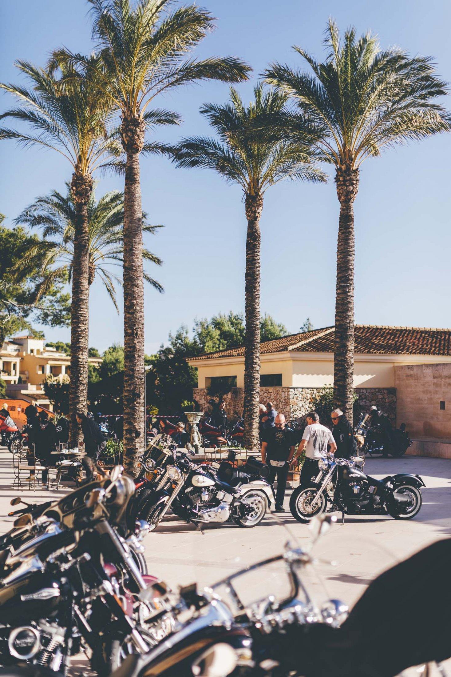 2019HD35 Mallorca Bike Week 31