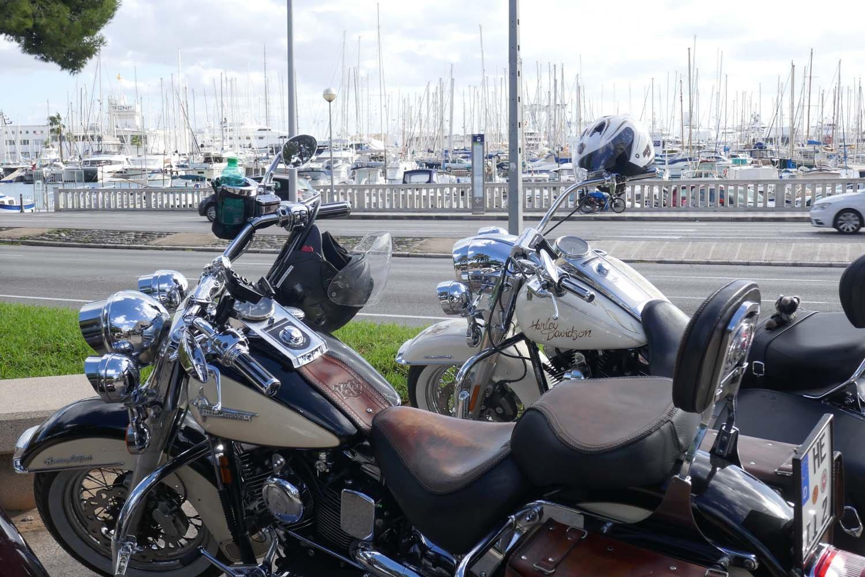 2019HD35 Mallorca Bike Week 48