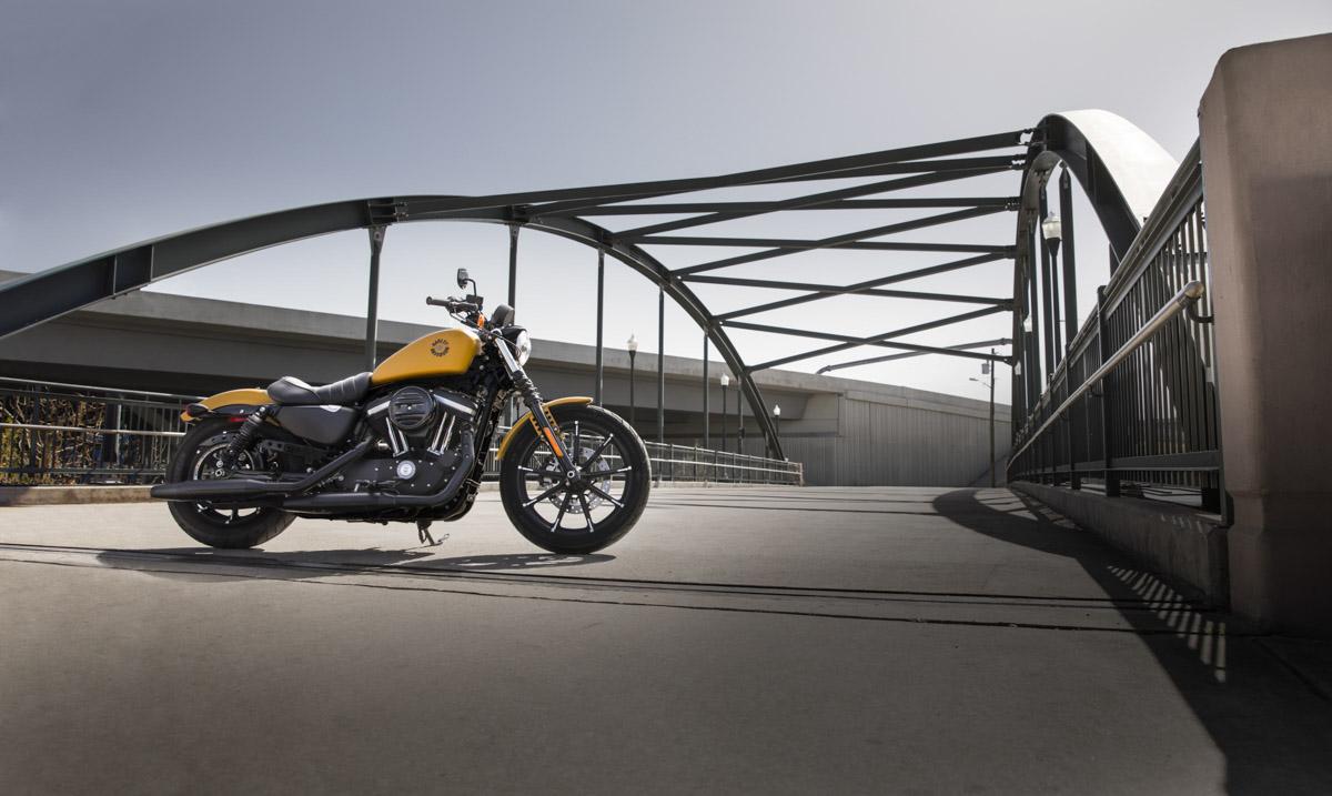 Harley-Davidson Iron 883 Modelljahr 2019