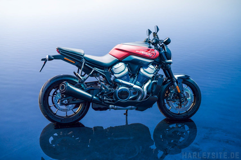 Bronx Streetfighter Harley-Davidson 2020-2