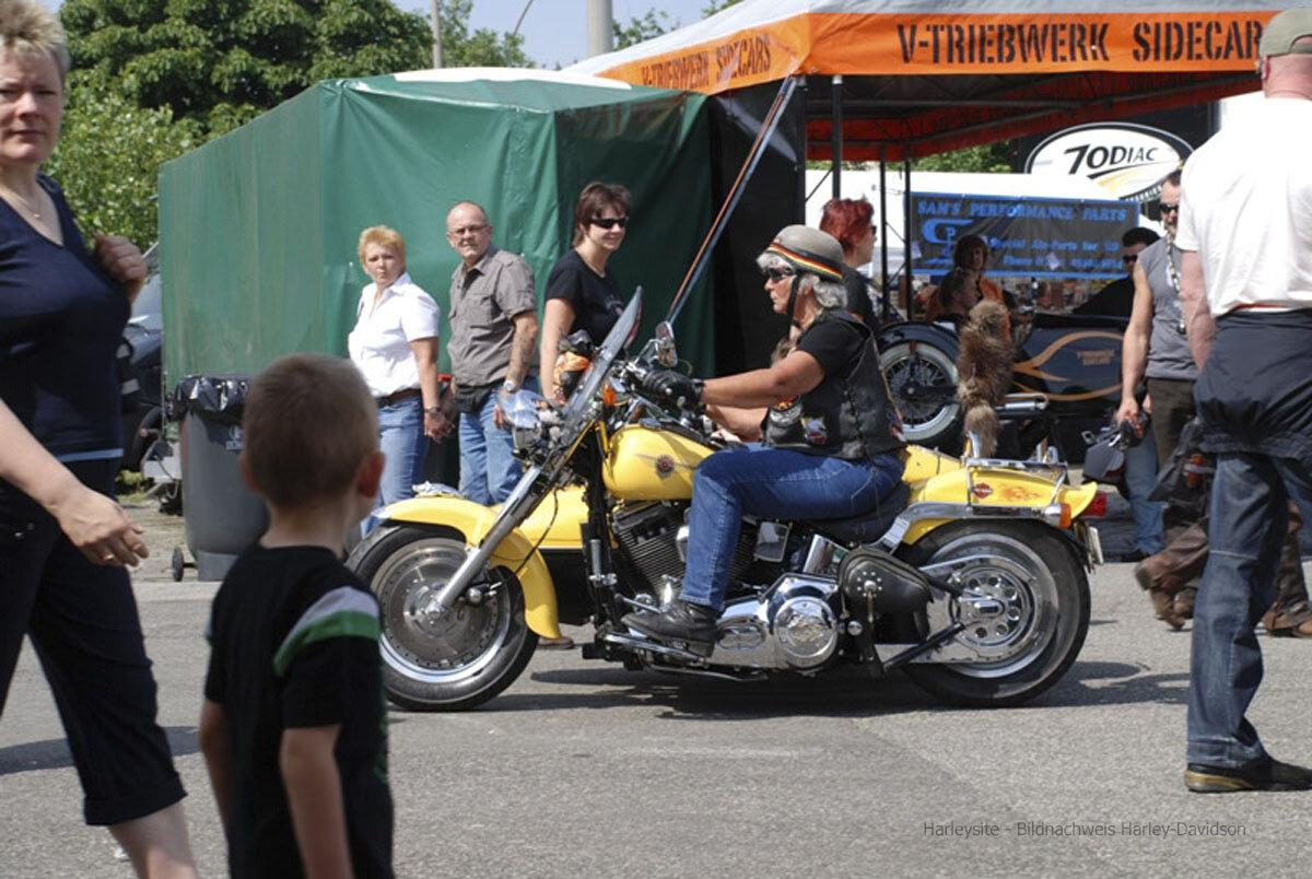 Hamburg Harley Days 2008 (18 Von 44)