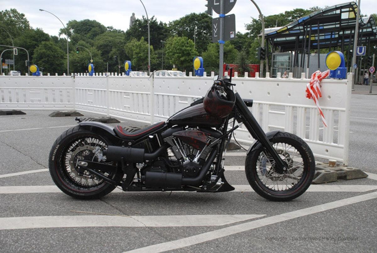Hamburg Harley Days 2008 (24 Von 44)