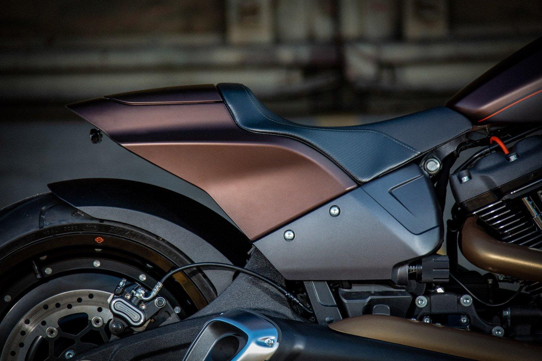 Harley-Davidson FXDR Custom-006