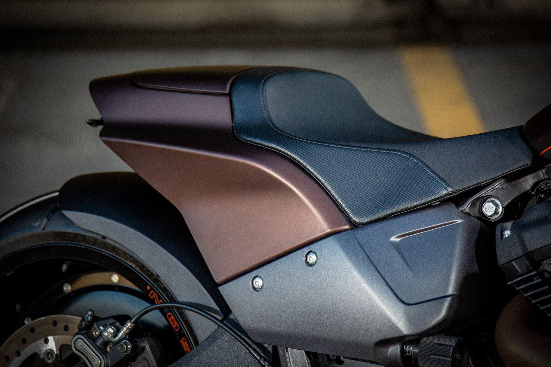 Harley-Davidson FXDR Custom-010