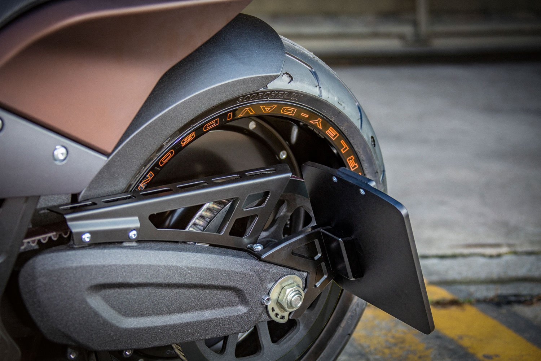 Harley-Davidson FXDR Custom-018
