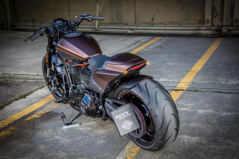 Harley-Davidson FXDR Custom-025