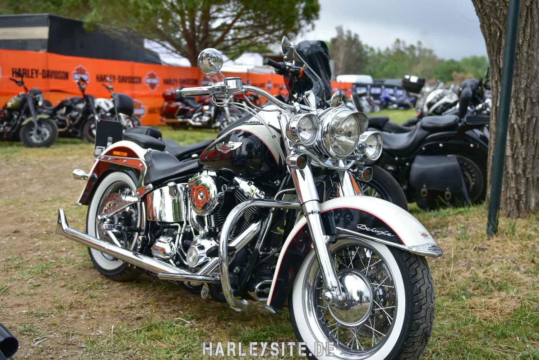 Saint-Tropez-Harley-Davidson-Event-0256