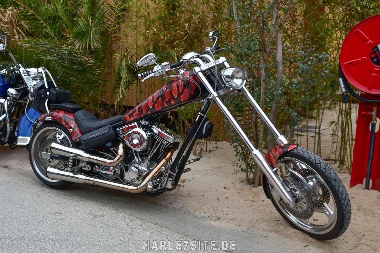 Saint-Tropez-Harley-Davidson-Event-0345