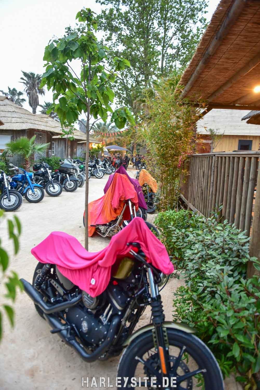 Saint-Tropez-Harley-Davidson-Event-0372