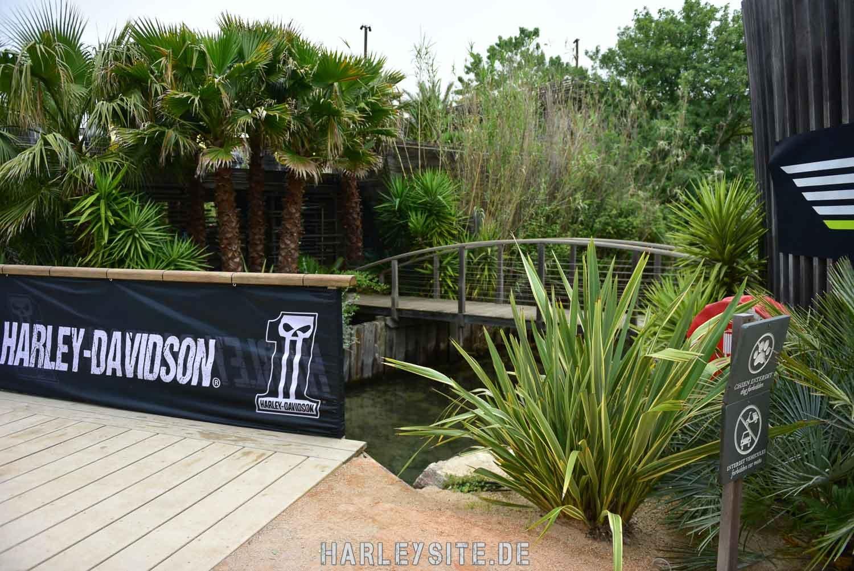 Saint-Tropez-Harley-Davidson-Event-8176