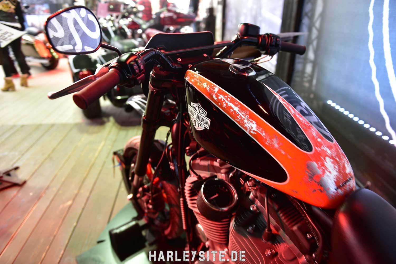 Saint-Tropez-Harley-Davidson-Event-8251
