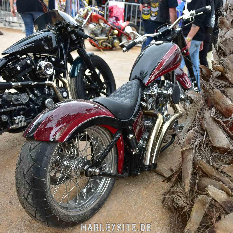 Saint-Tropez-Harley-Davidson-Event-8392