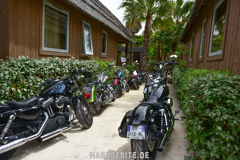 Saint-Tropez-Harley-Davidson-Event-8588