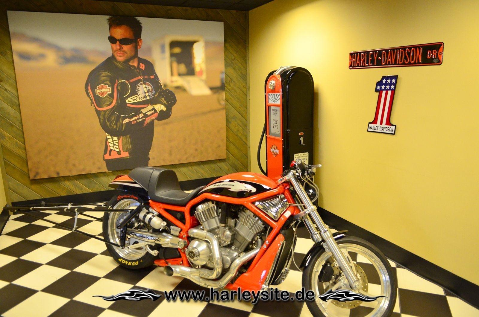 Erster Sonntag Daytona-2013 142