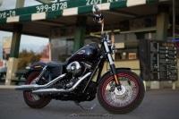 Harley-Davidson präsentiert die Dyna Street Bob Special Edition