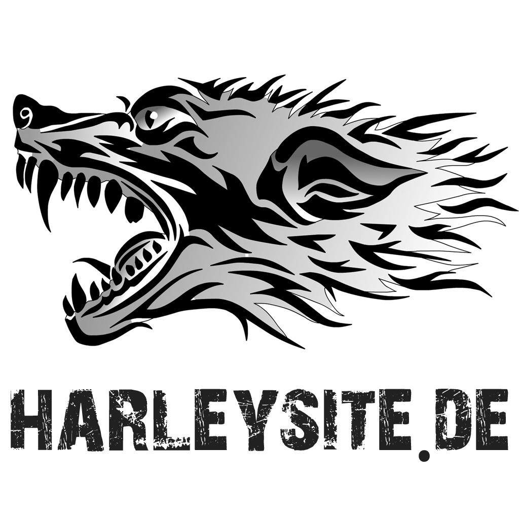 Harleysite.de wünscht frohe Weihnachten und einen guten Rutsch ins neue Jahr 2014