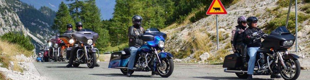 Harley Davidson Tourer während eines Events