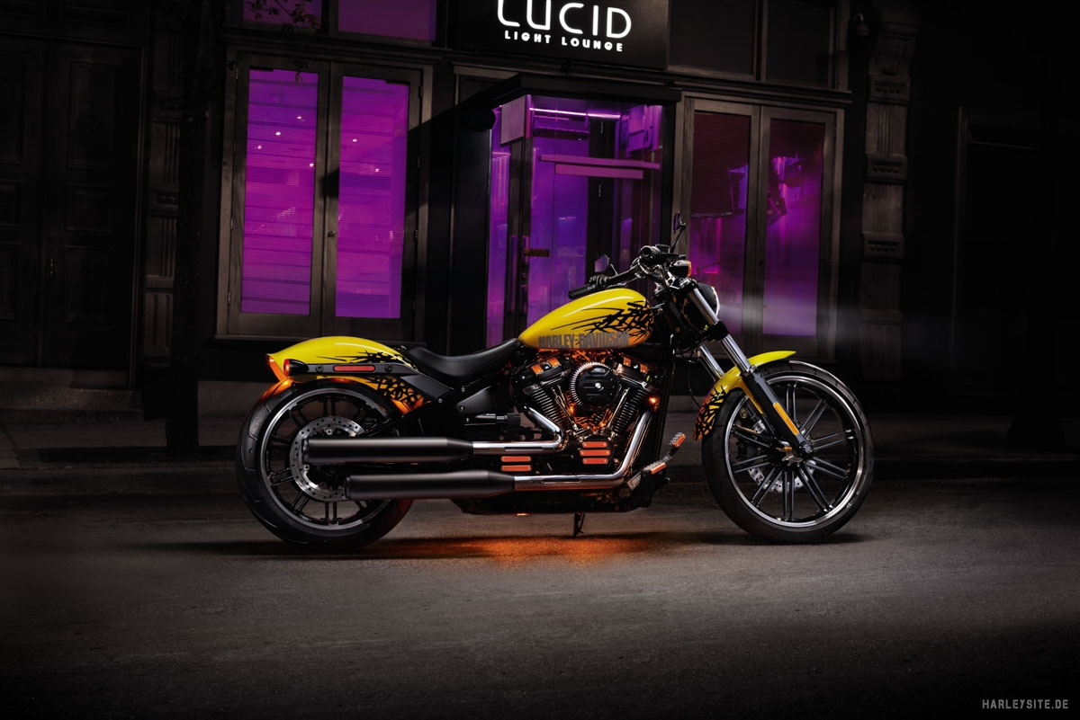 Harley-Davidson Breakout 114 cui 2019 Customized