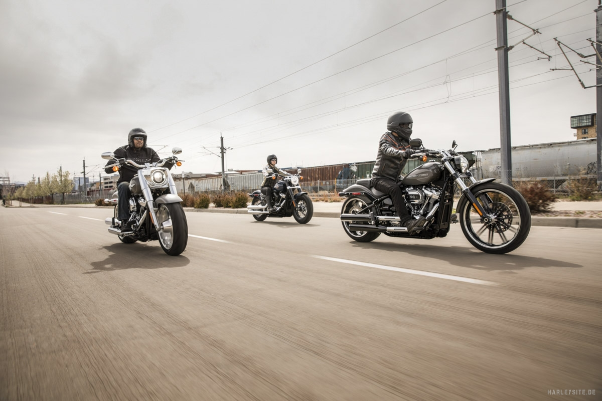 1 2019 Softail Slim 21 US Version Mitte