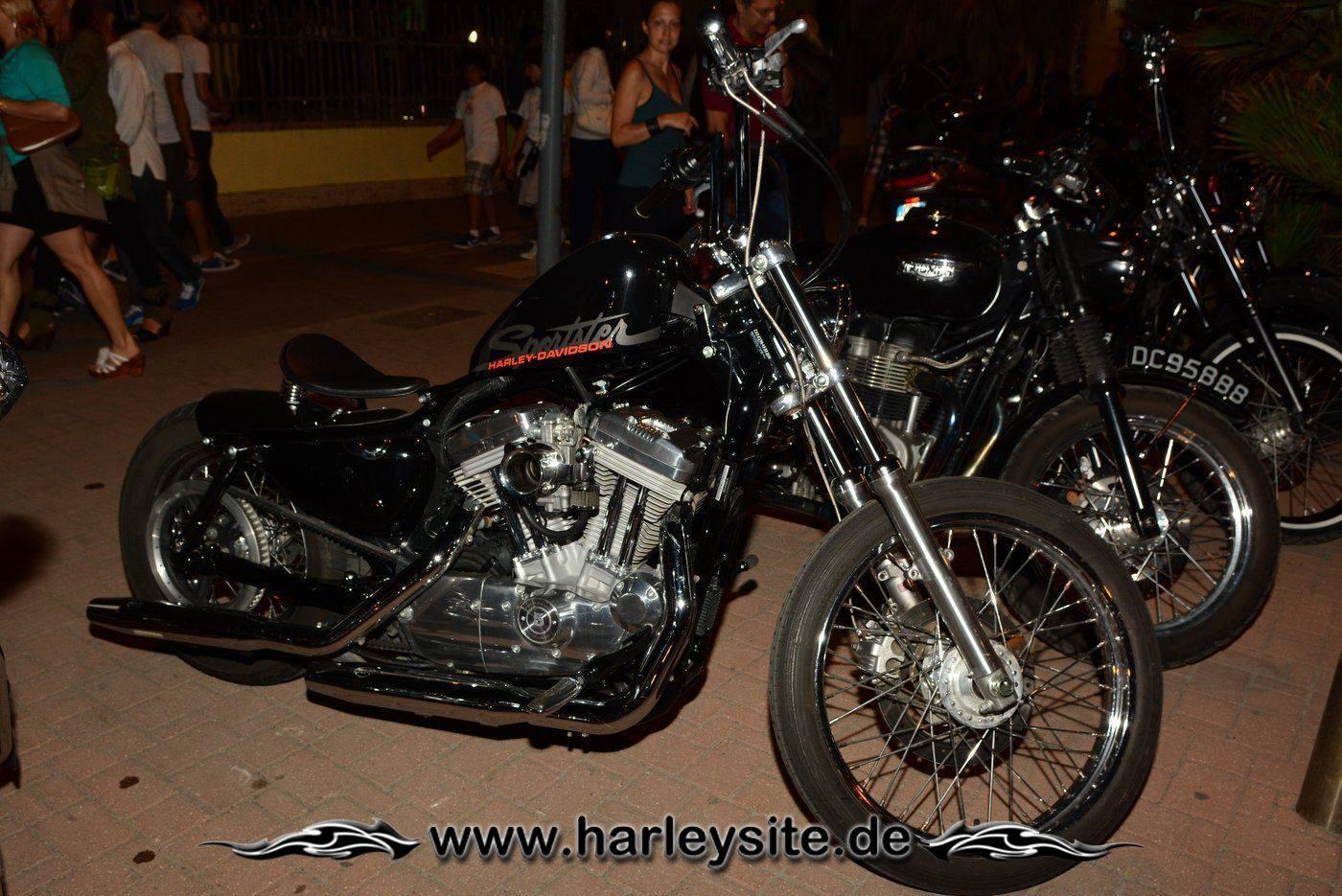110th Harley Rom 38
