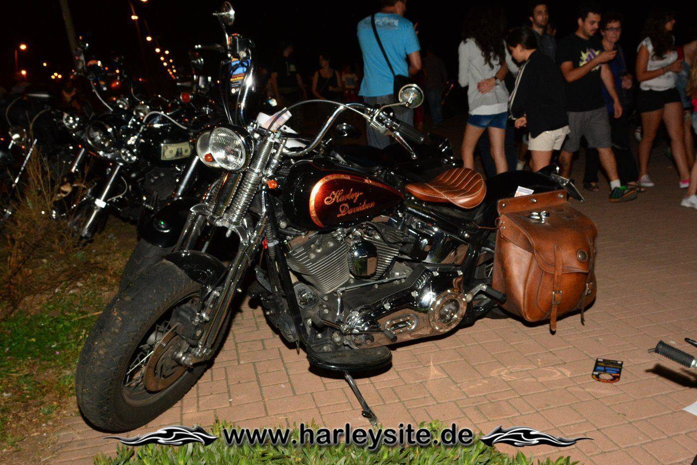110th Harley Rom 65