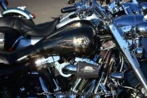 Harley 110th Rom Ostia 241