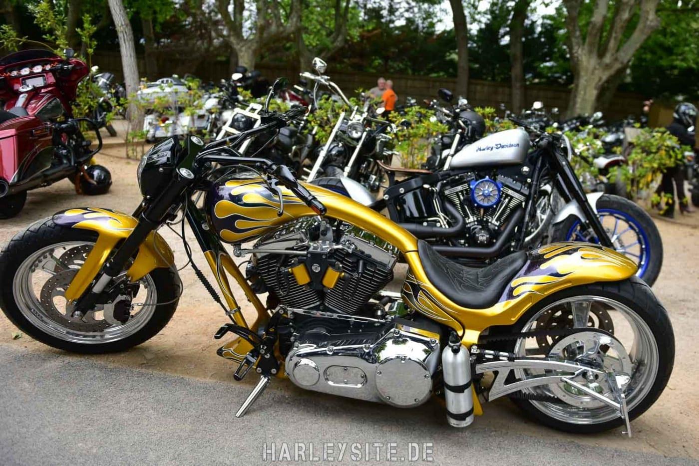 Custombike Saint Tropez Harley Davidson Event 8558