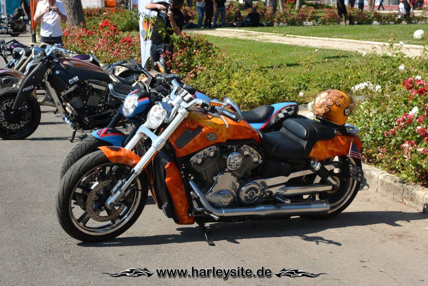 Harley Rom 110th 106
