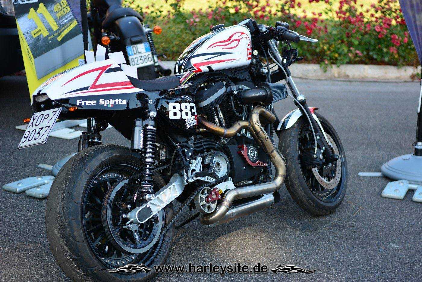 Harley Rom 110th 121