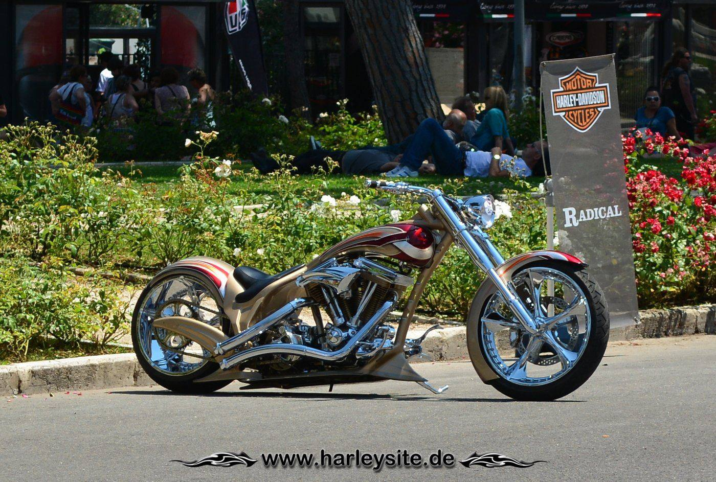 Harley Rom 110th 34