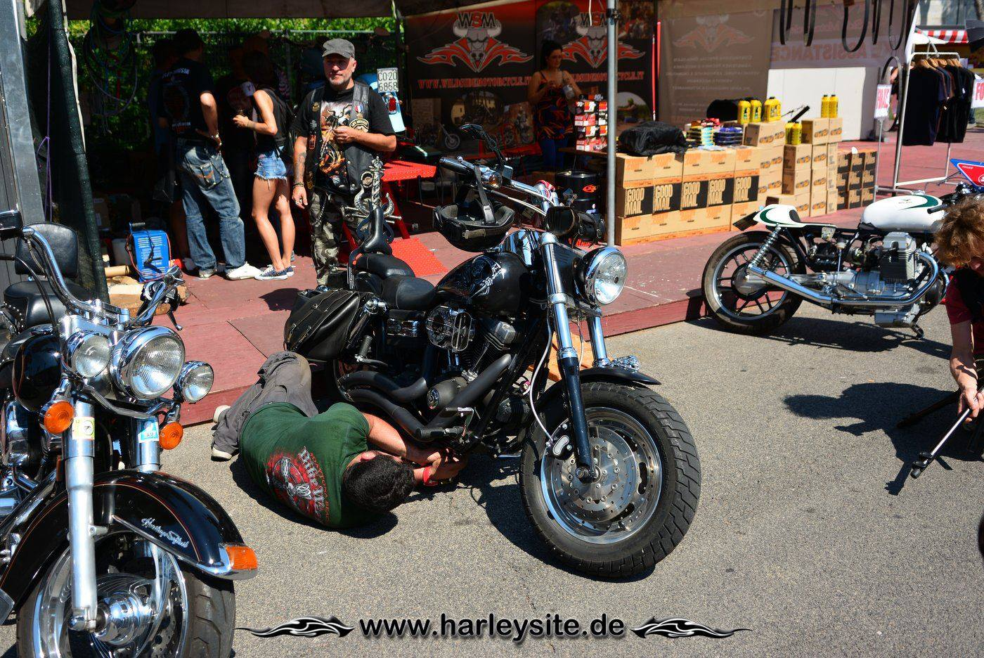 Harley Rom 110th 81