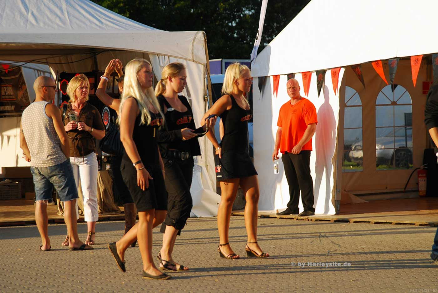 Scandinavian Harley Days 2008