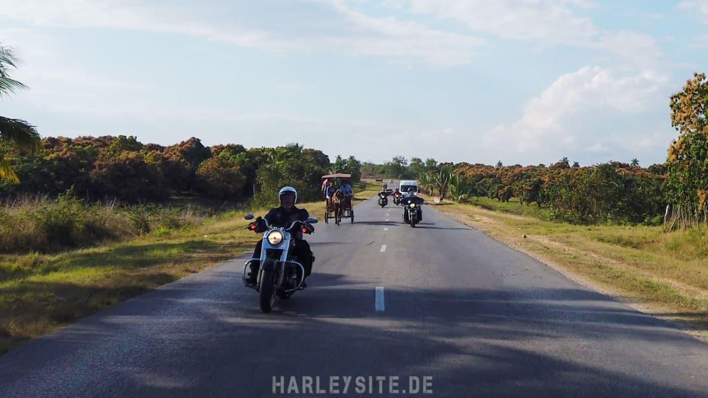 Wir überholen mit unseren Harleys einen Pferdekarren