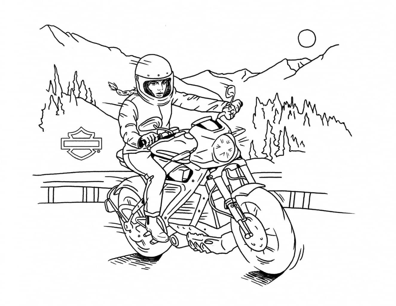 HDMC Coloring Riding - Malvorlagen