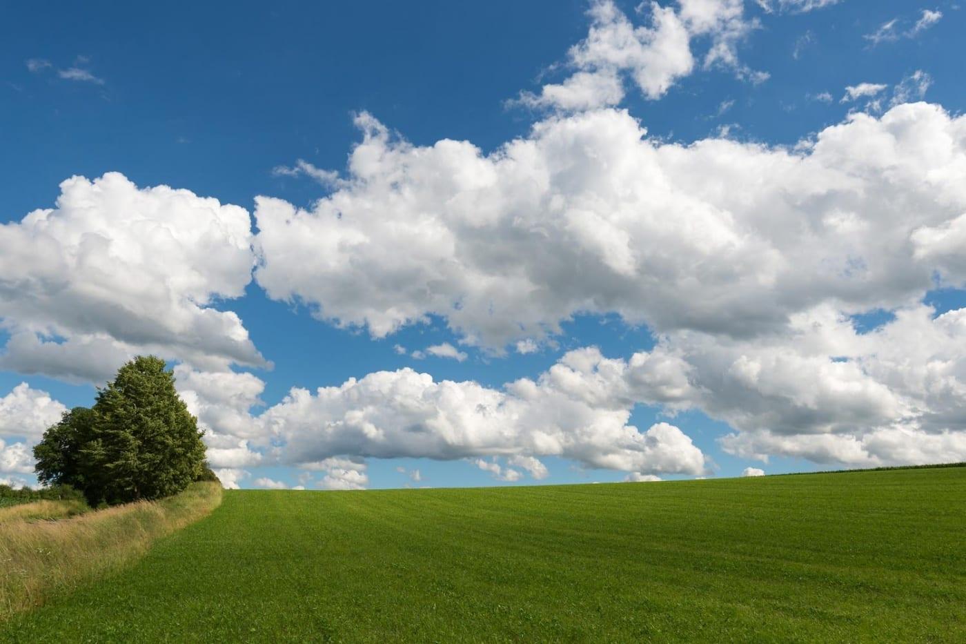 Cumulus Quelle WetterOnline