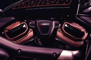 Harley-Davidson_BareKnuckle_2021